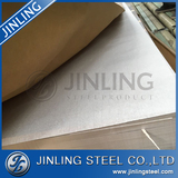 Hot selling stainless steel sheet/plate/stainless steel decorative sheets